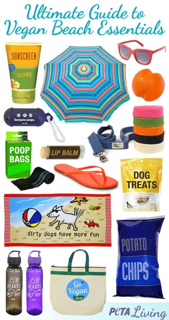 Vegan-Beach-Essentials-Share-Able-Image-541x1024