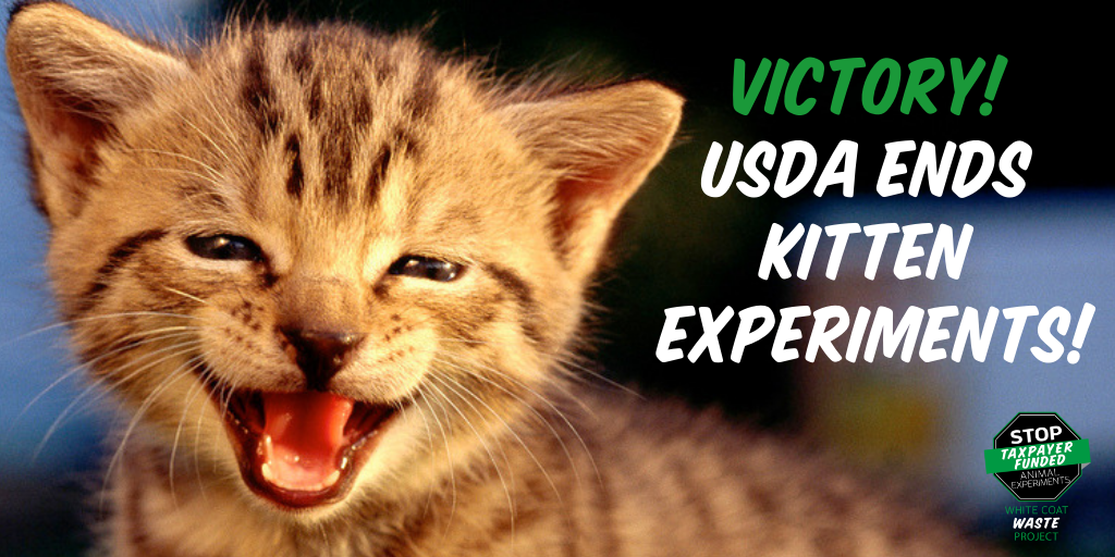 VICTORY-USDA-ENDS-CAT-EXPERIMENTS