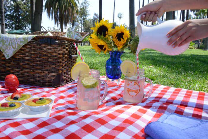 Lemonade-Picnic