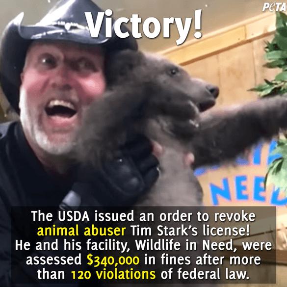 Tim-Stark-Victory-Post