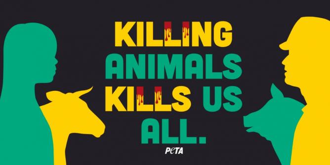 Killing-Animals-Kills-Us-All-668x336-1590505614