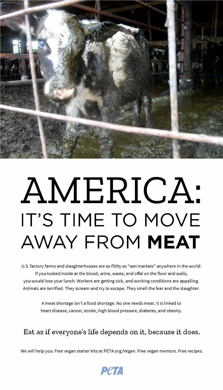 PETA_Move_Away_Cow_Ad-768x1344